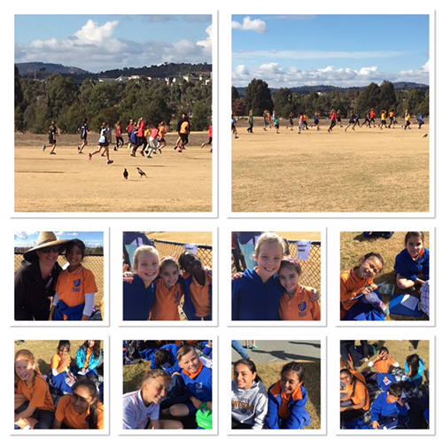Cross Country Carnival
